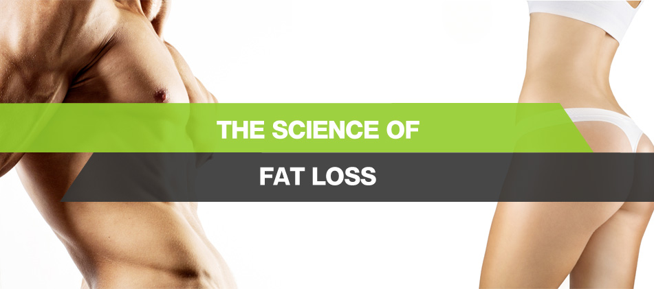 the-science-of-fat-loss